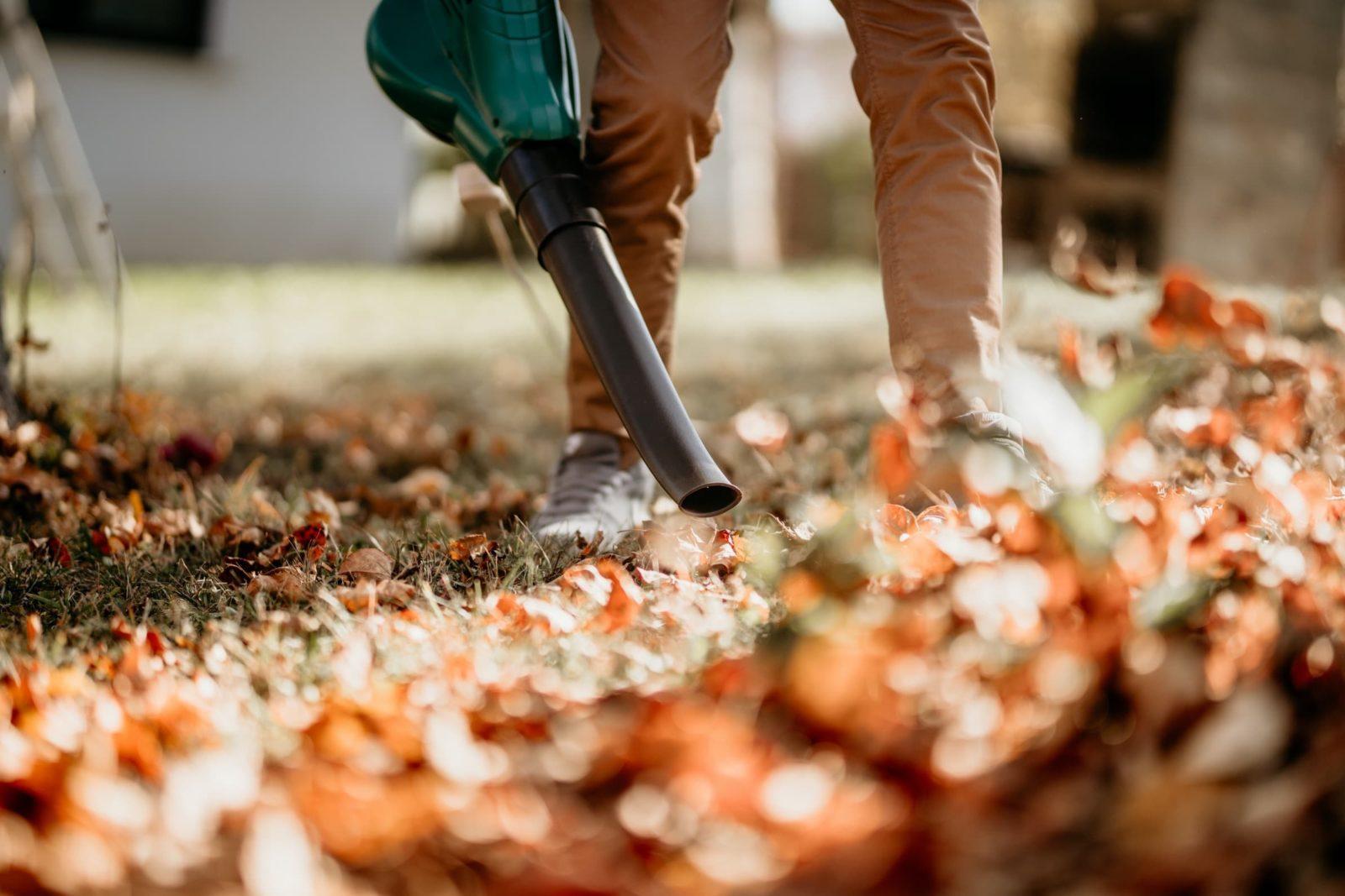man blowing leaves around garden