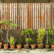 wooden garden screening with potted plants below