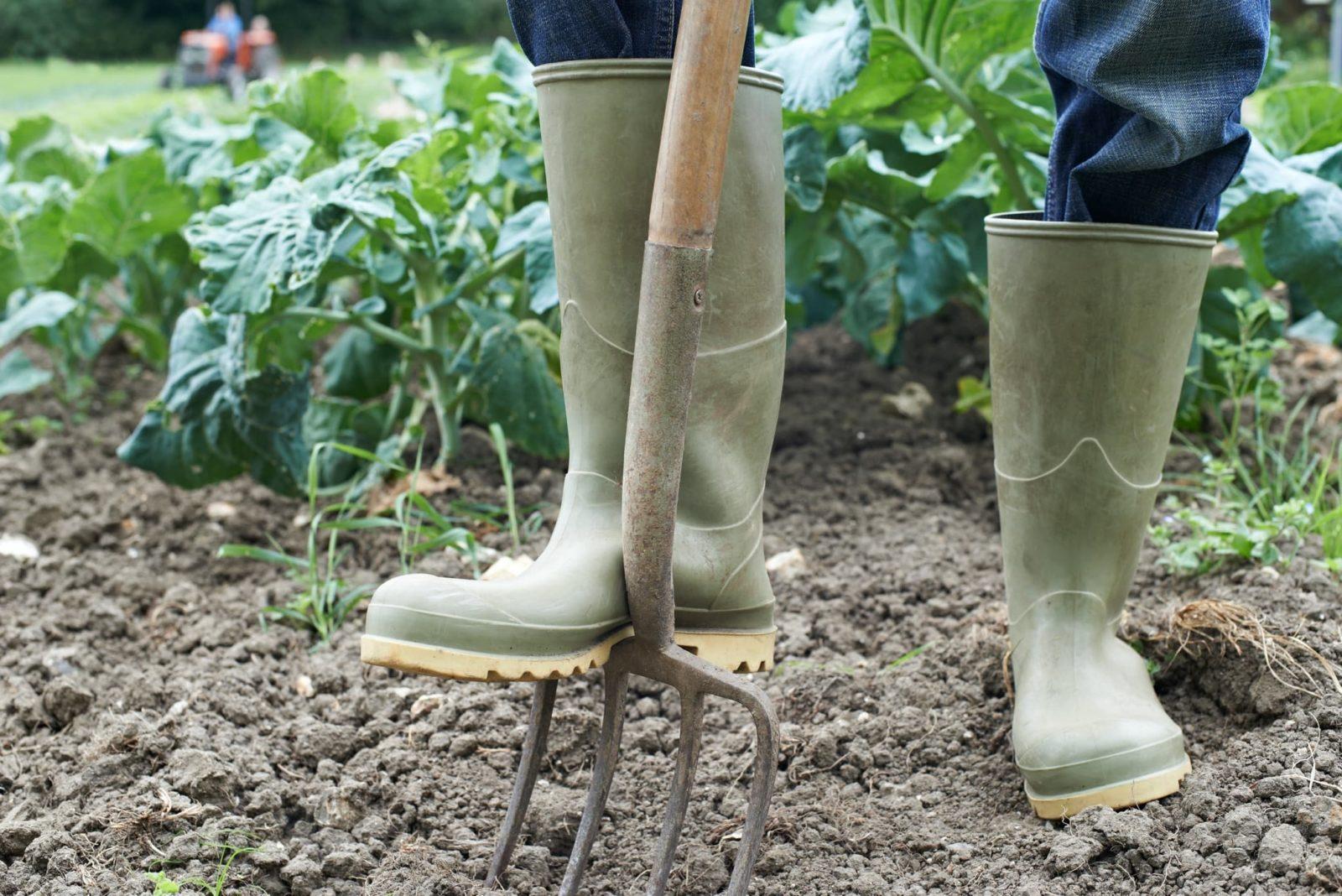 man in wellies using garden fork