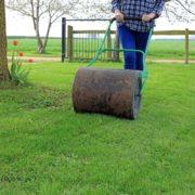 man rolling lawn