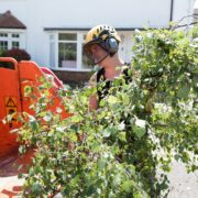 man feeding branches into a wood chipper