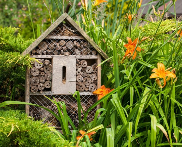 wooden insect hotel amongst garden foliage