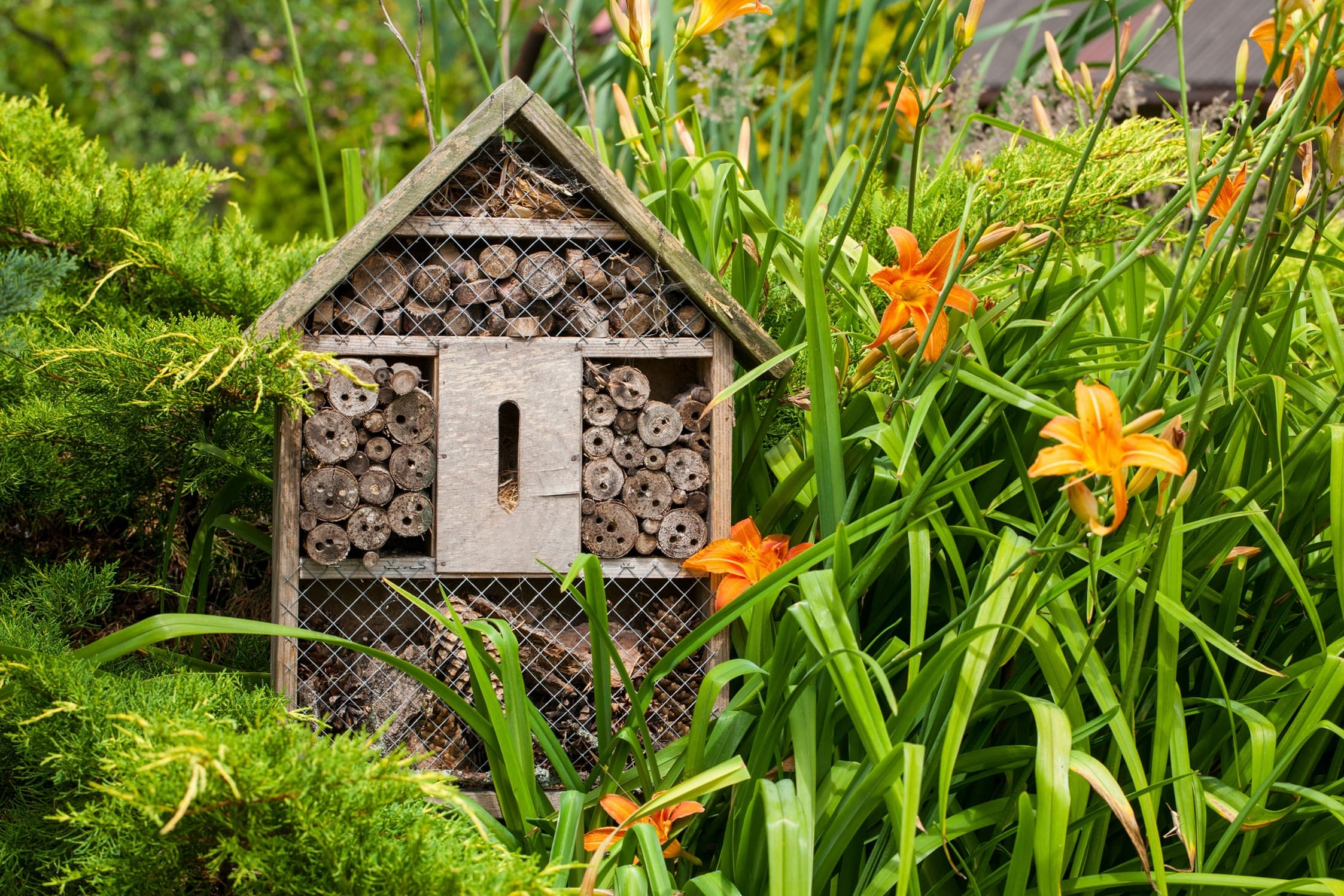 Gardeners Supply Company Wooden Insect Hotel with Stake