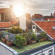 tiny rooftop terrace garden