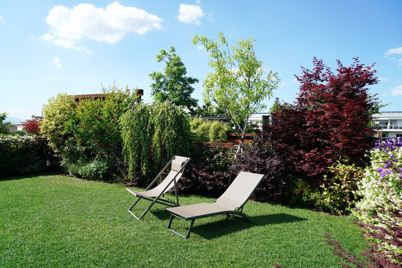 two loungers in a sunny garden