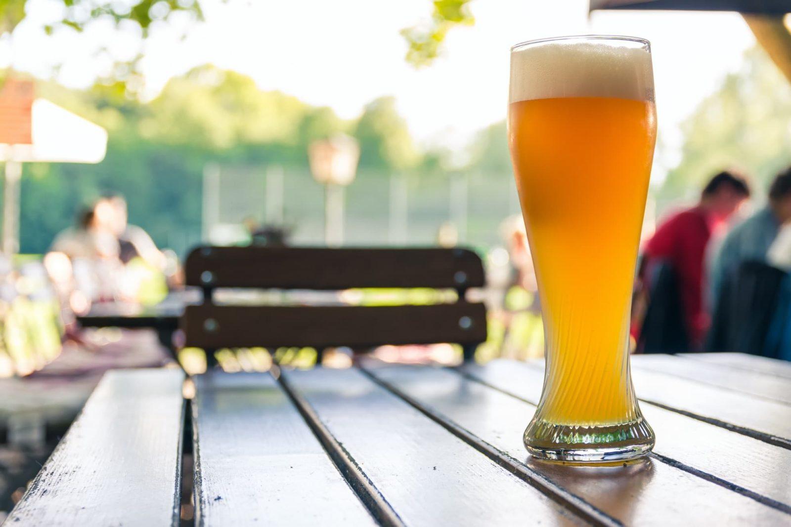 pint of lager sat on bench in garden