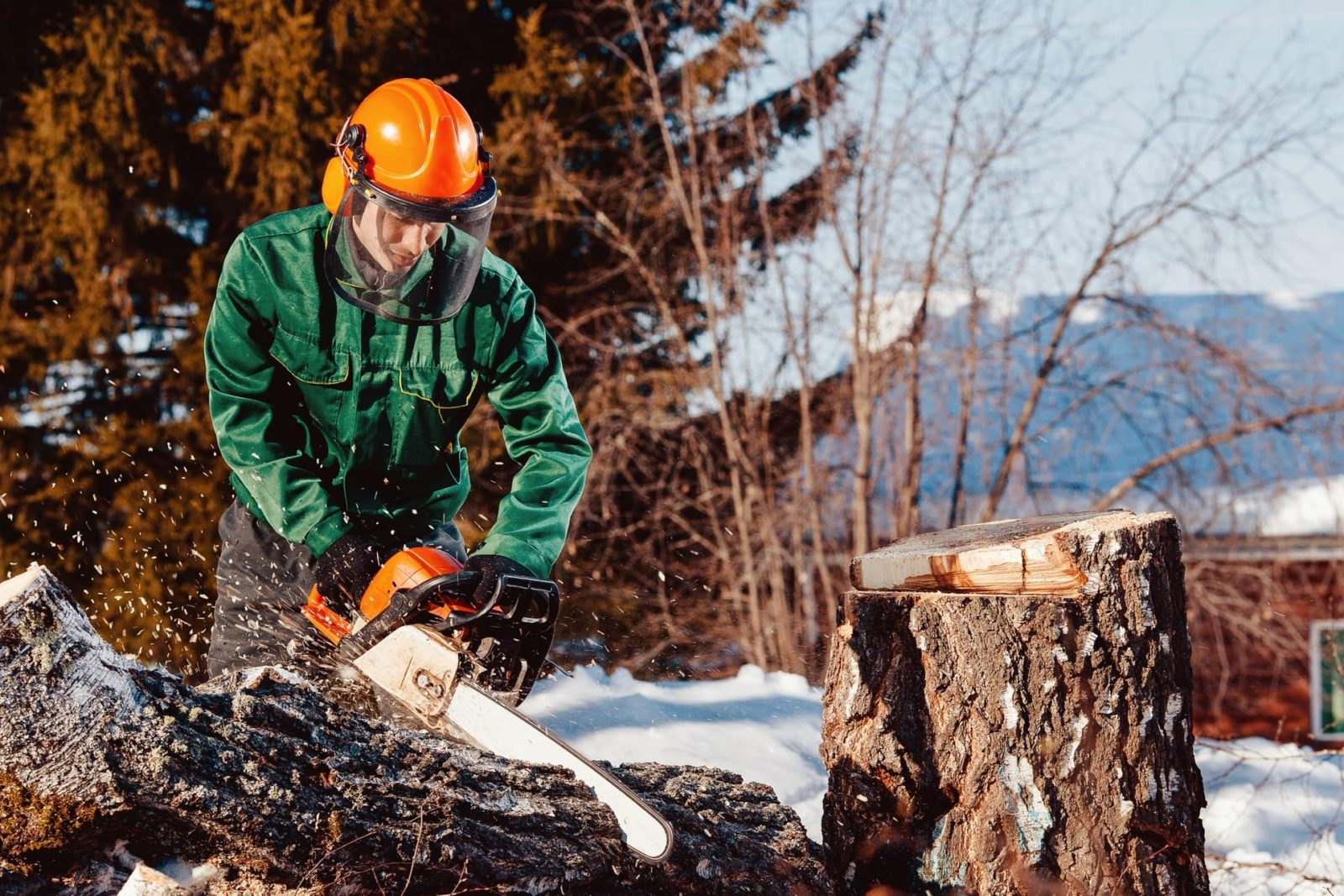 man with orange chainsaw helmet cutting through log