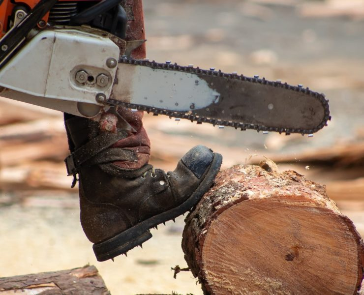 man stood on tree trunk with chainsaw ready