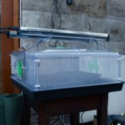 a heated electric propagator in the home