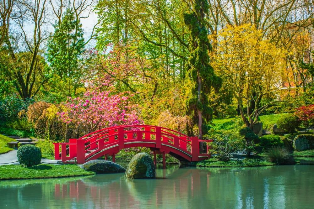 huge japanese garden with red bridge over water
