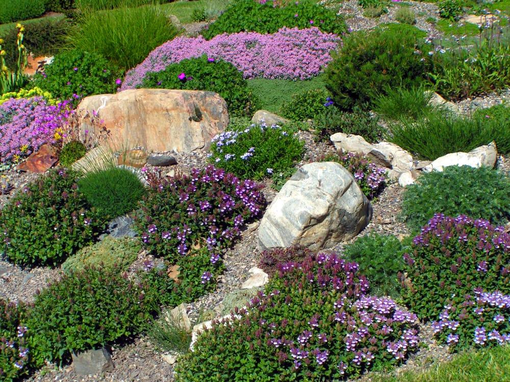 a rock garden in the uk