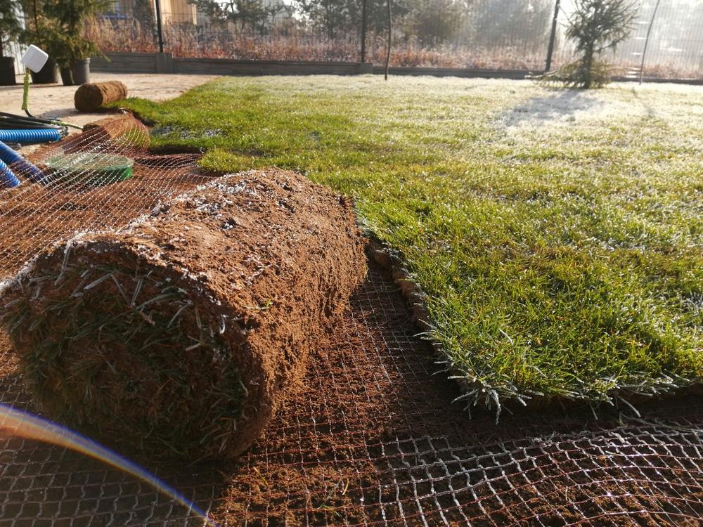 mole netting under freshly laid lawn