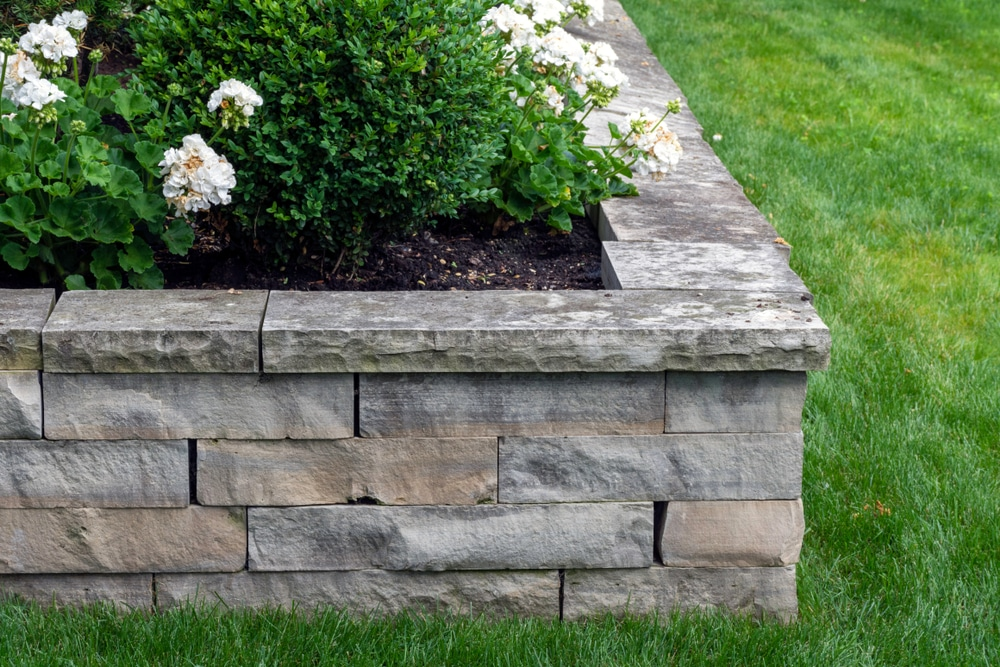 A natural stone retaining wall with plants growing from the top and lawn in the background