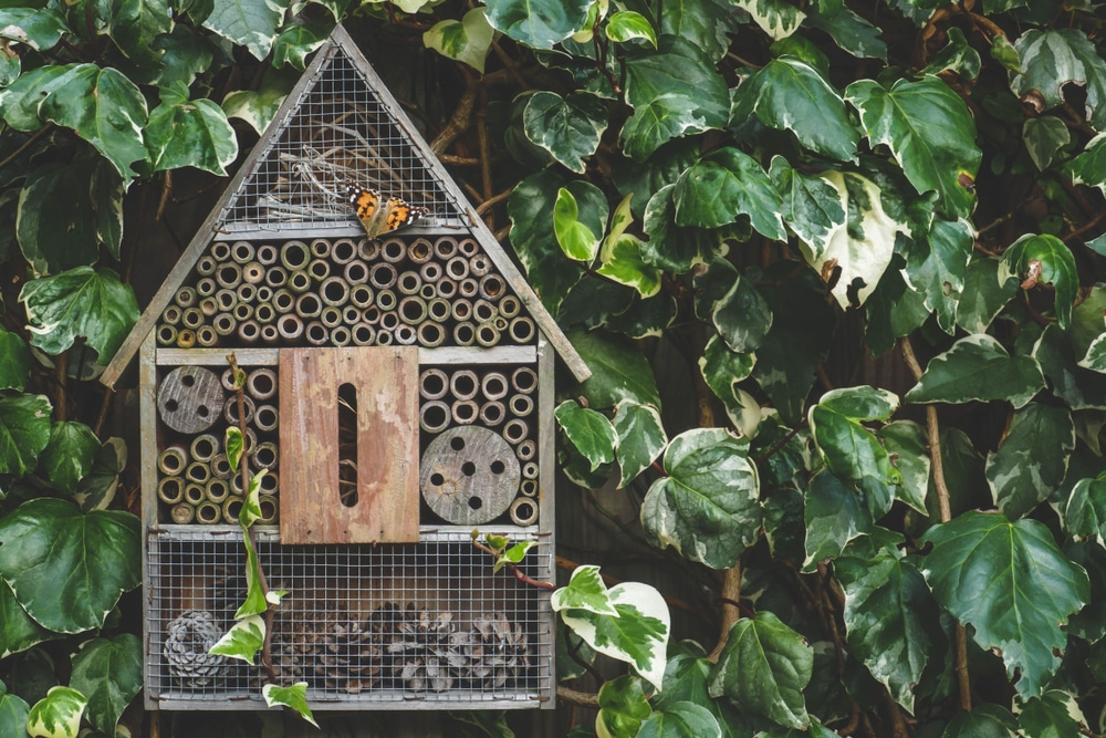 An insect hotel with an orange butterly