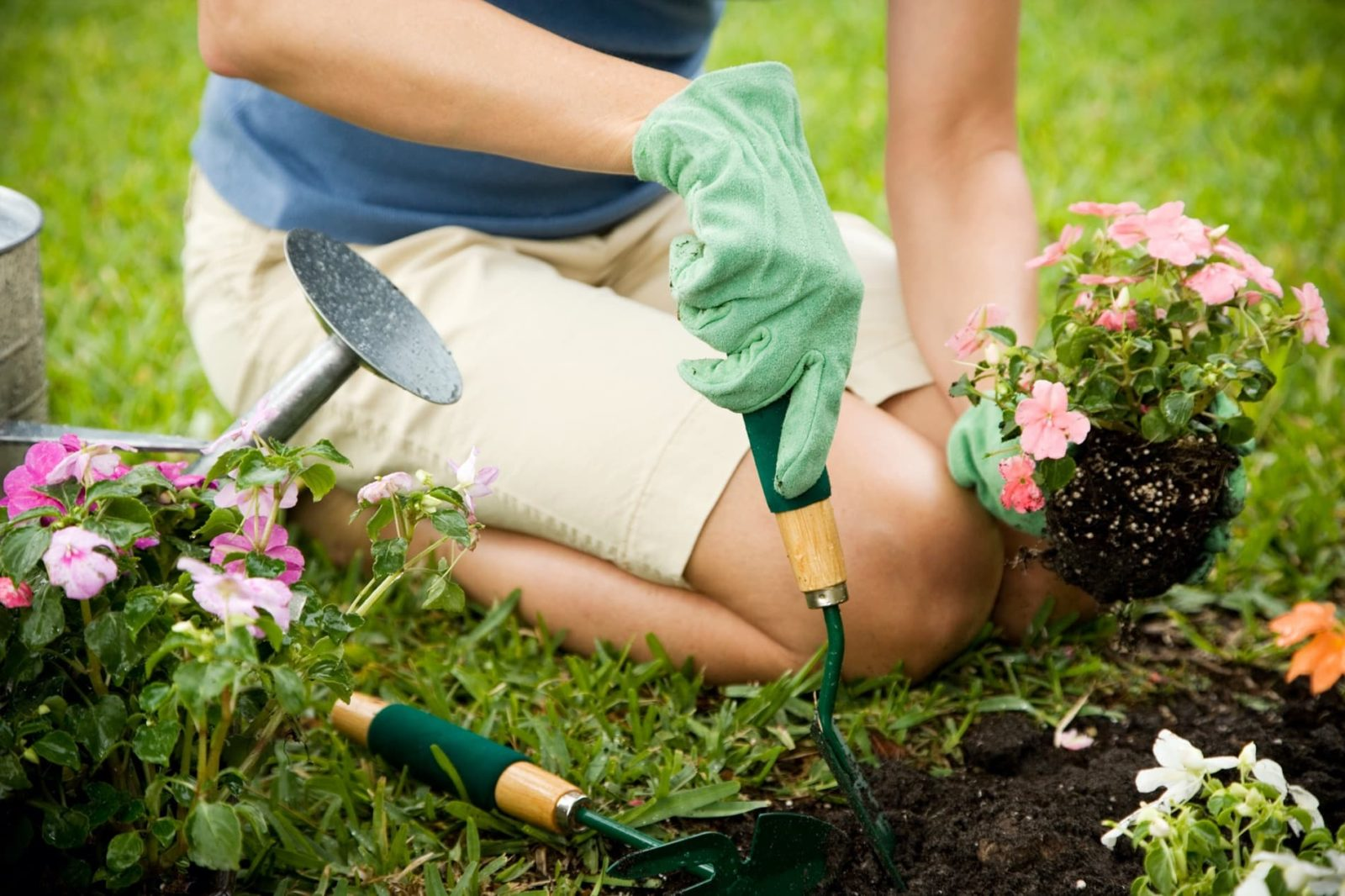 woman on her knees planting flowers
