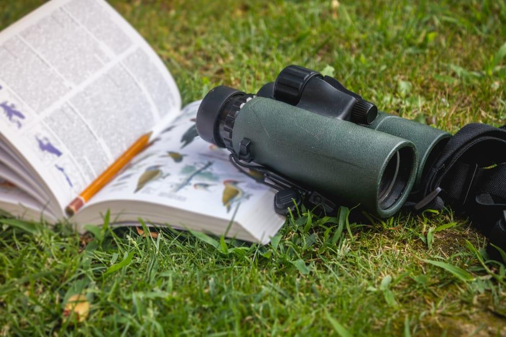 binoculars on a birdwatching book