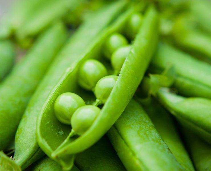 green peas up close