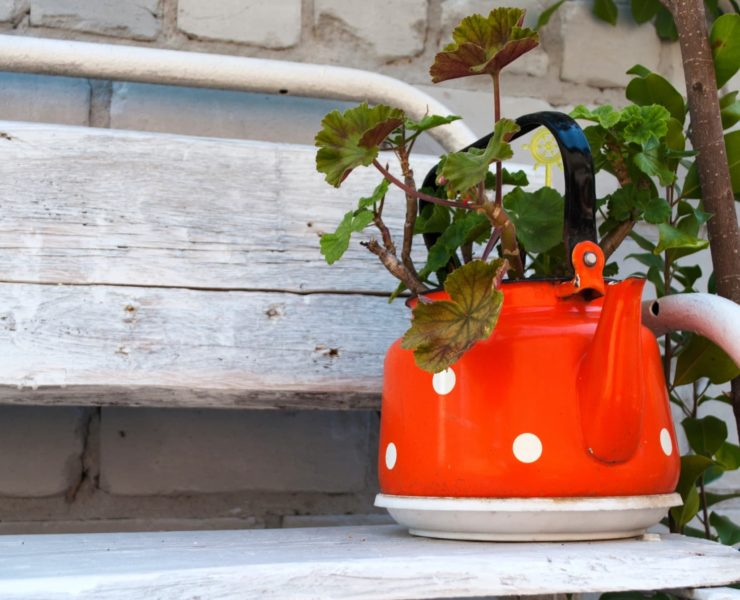 orange kettle sat on a planter bench