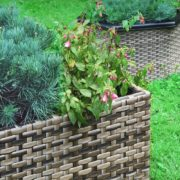 3 rattan planters sat on a garden lawn