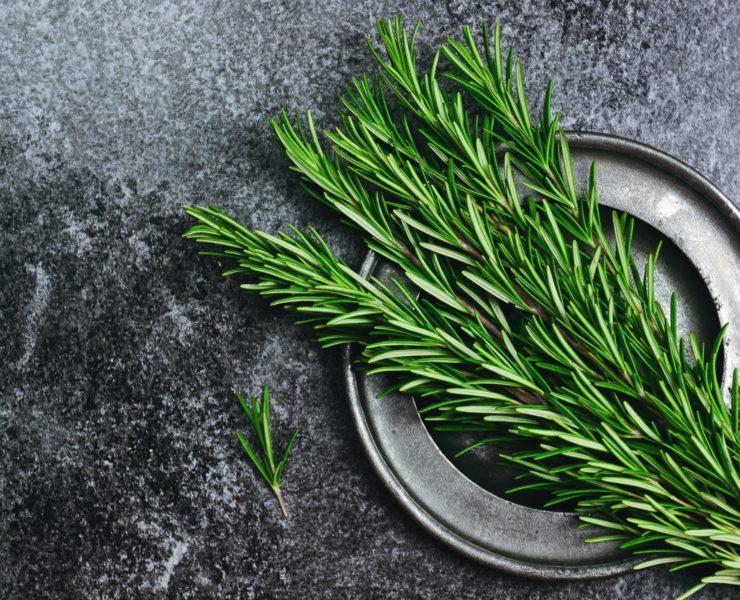 fresh rosemary herb on a kitchen worktop