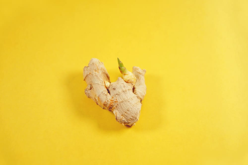 ginger root with a sprouting plant on yellow background