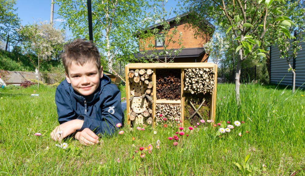 boy laid next to an insect hotel