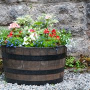 various plants growing in a barrel planter