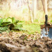 worker digs soil in a garden