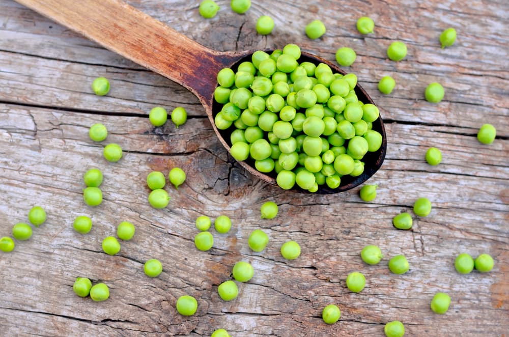 garden peas sat on a wooden spoon