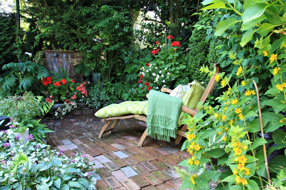 a comfortable lounge chair amongst various plants in a garden