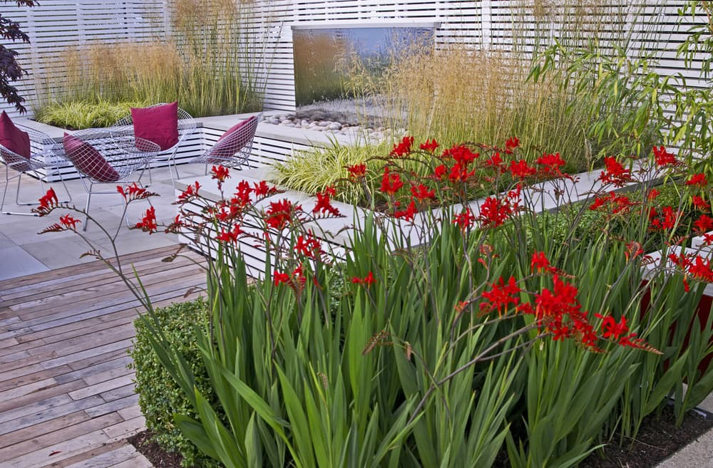 garden beds at various levels with decking and furniture in the background