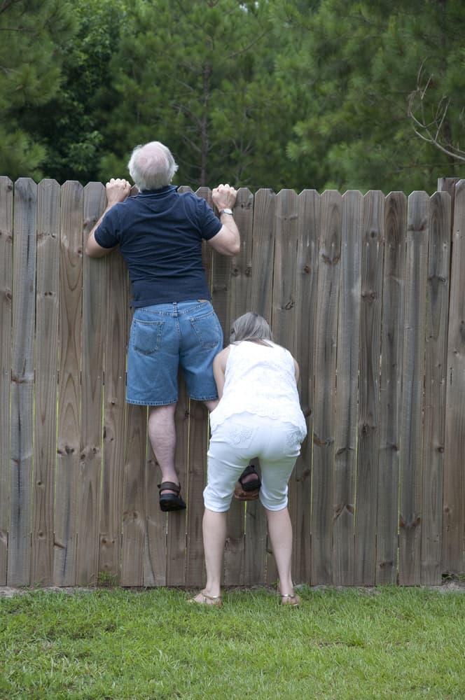 neighbours peeking over a fence