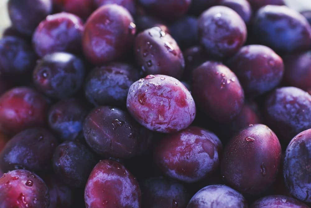 ripe purple plums that have been freshly washed