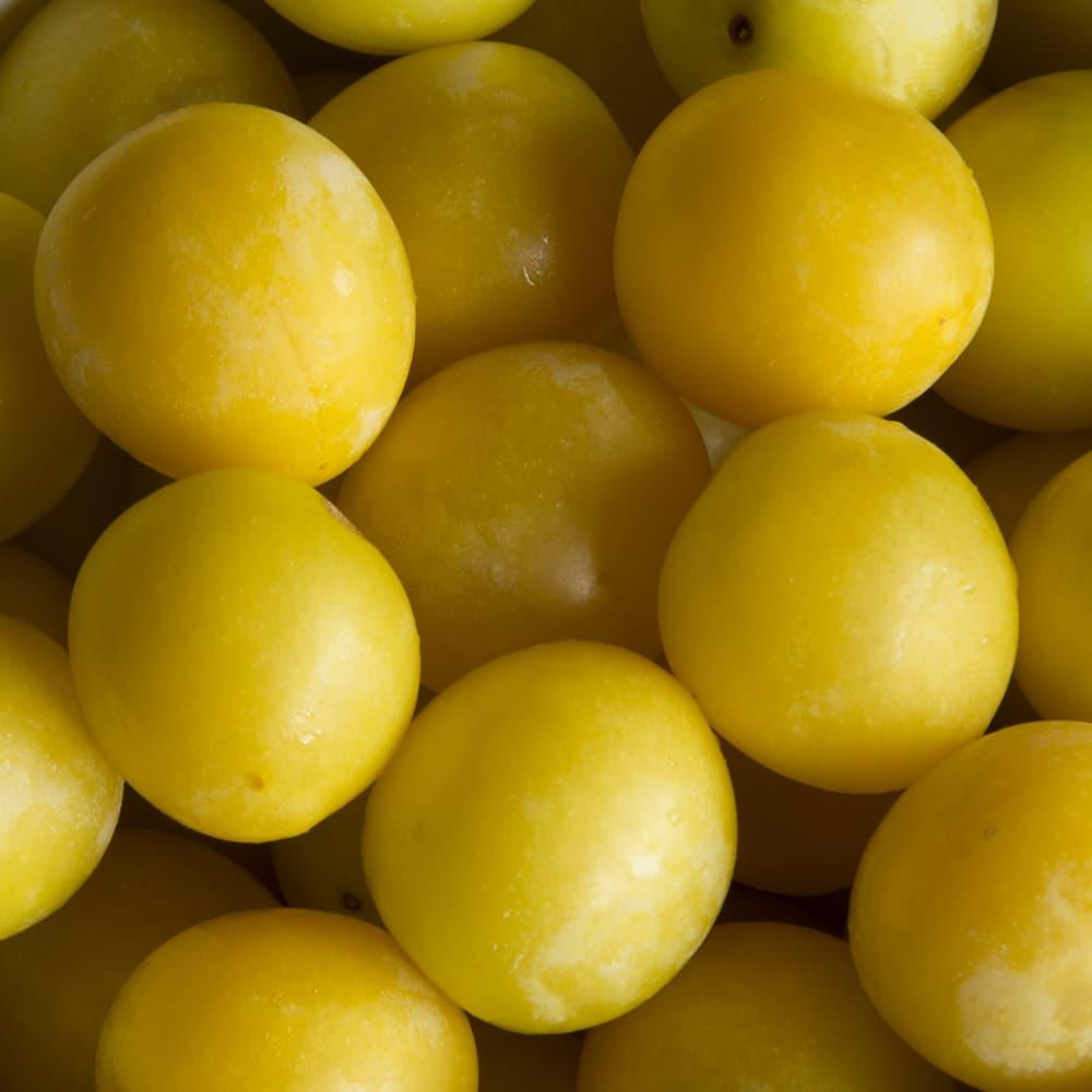 yellow Mirabelles