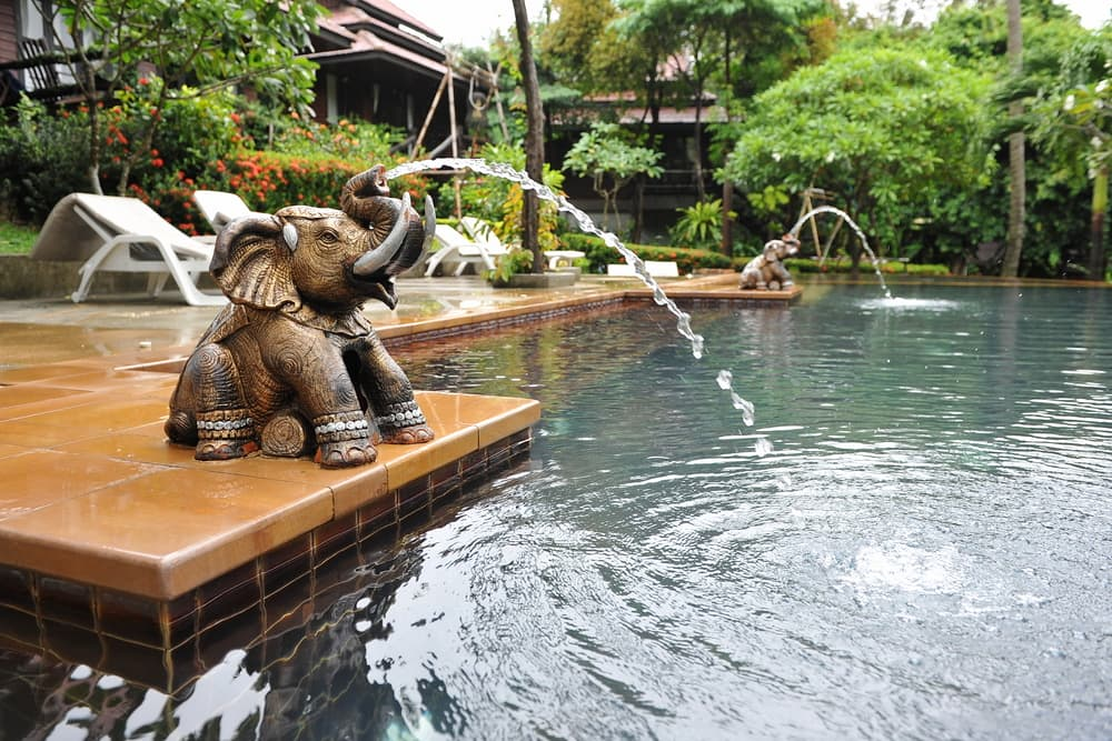 animal gargoyles part of a spa water feature