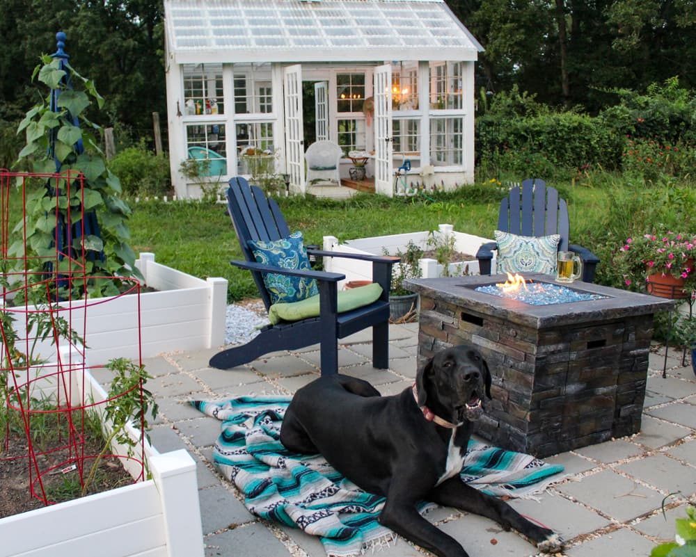 a dog and firepit pictured on a garden patio