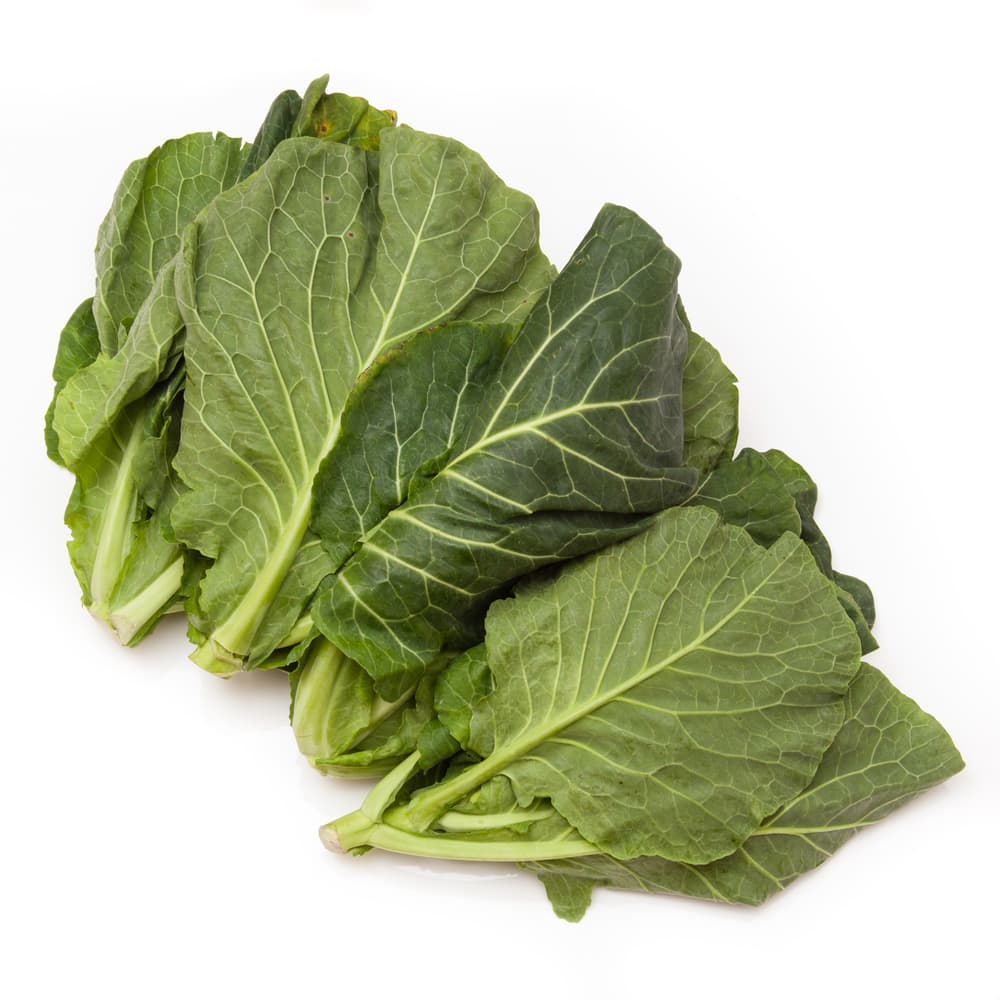 cabbage leaves on a white background