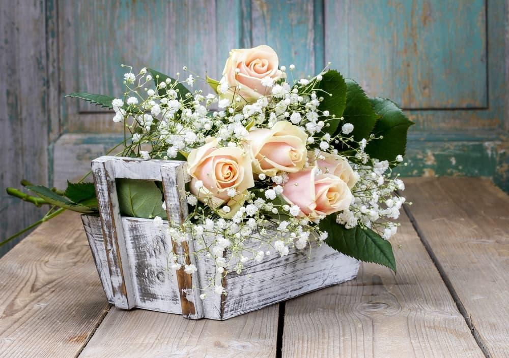 a rose basket with white gypsophila