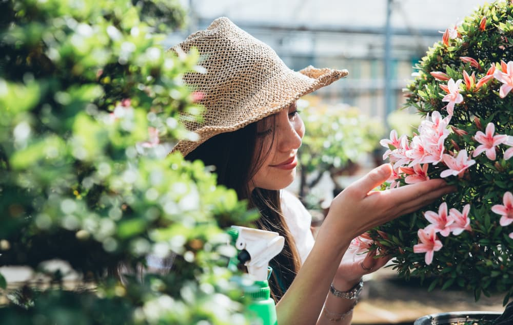 woman caring for plants in a greenhouse