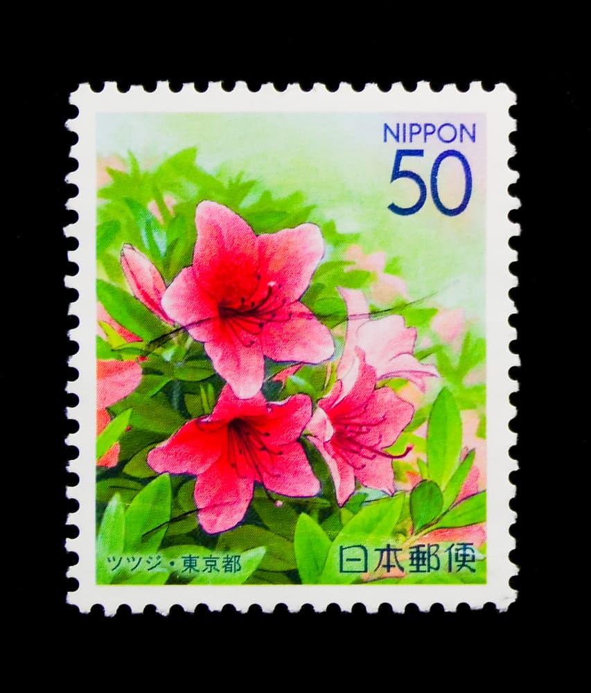 stamp printed in Japan shows Azalea flower