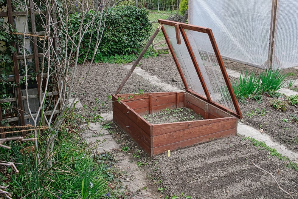 a timber cold frame in a garden with surrounding vegetable patches