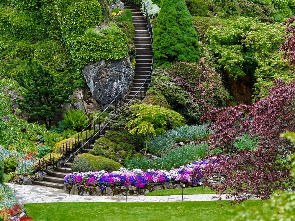 an extremely steep stairway in a Candian public garden with plenty of accompanying trees and flowers