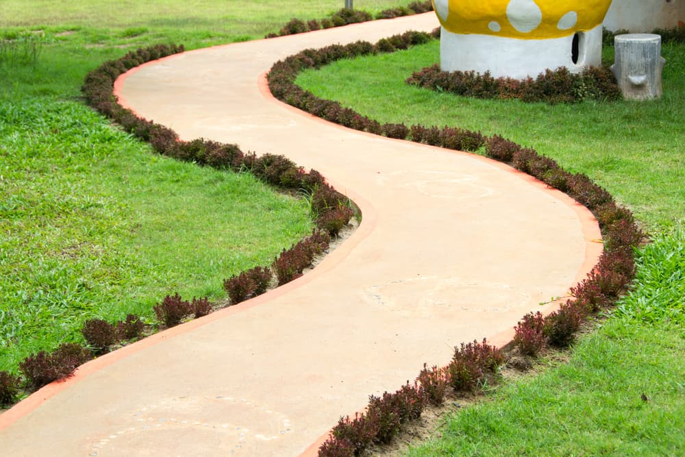 a winding path with tiny plants on its borders
