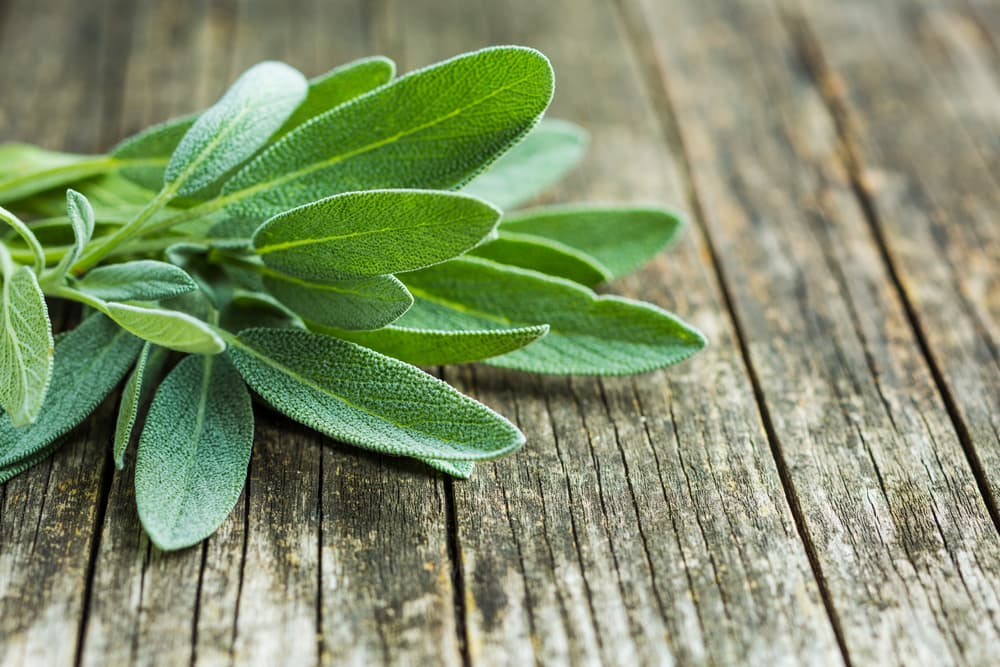 green sage leaves sat on a wooden table
