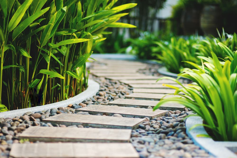tropical garden including stepping slabs combined with loose stones