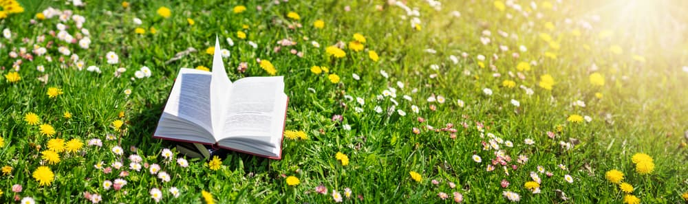 open book on a grass field in spring, with various weeds