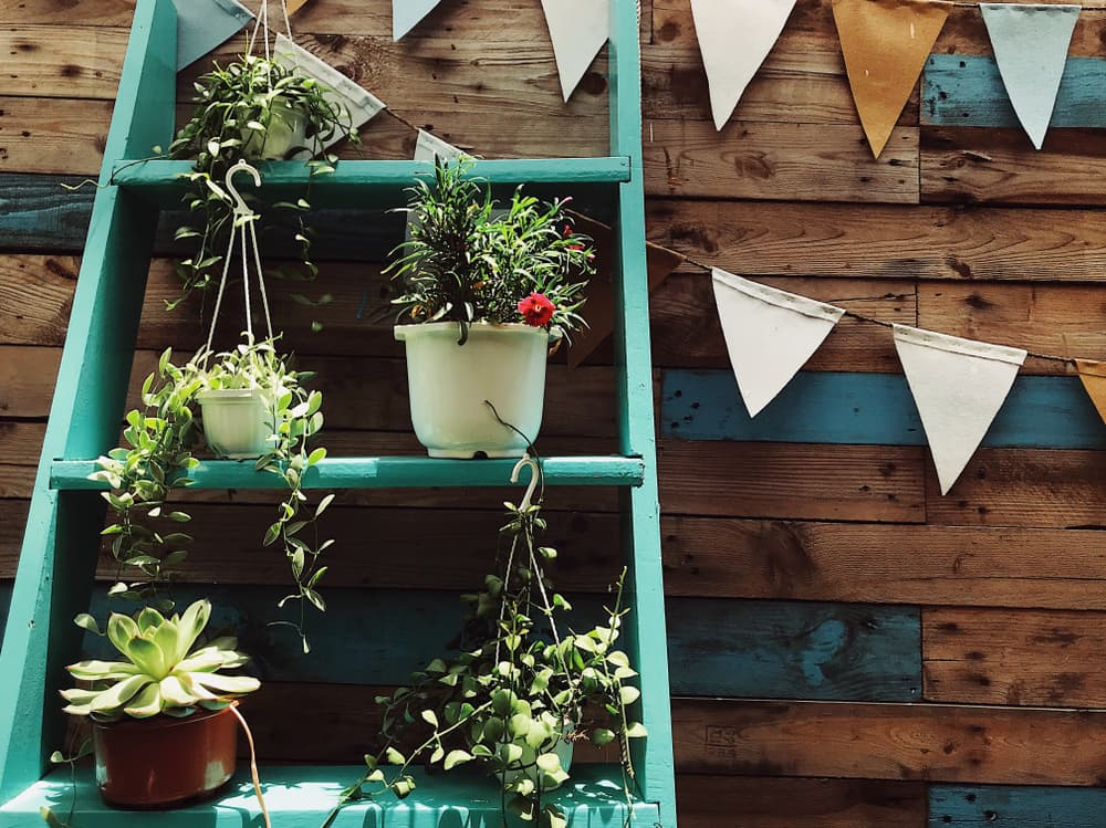 old dressers with planters on a timber wall