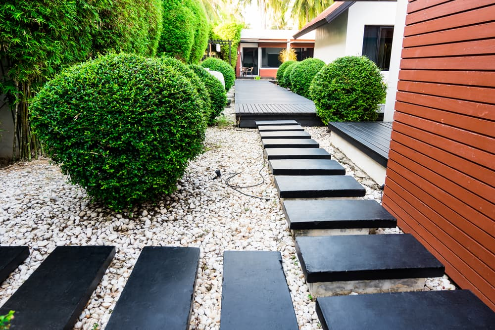 steps in a gravel garden at various heights, with conifers in the background