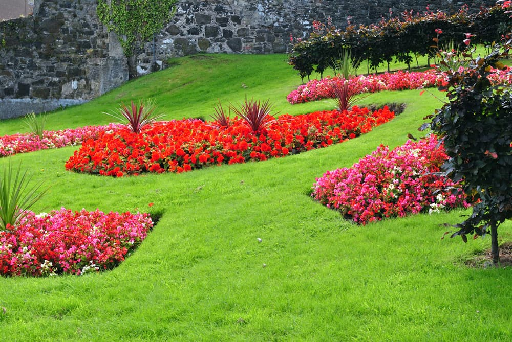 a colourful floral display in public gardens