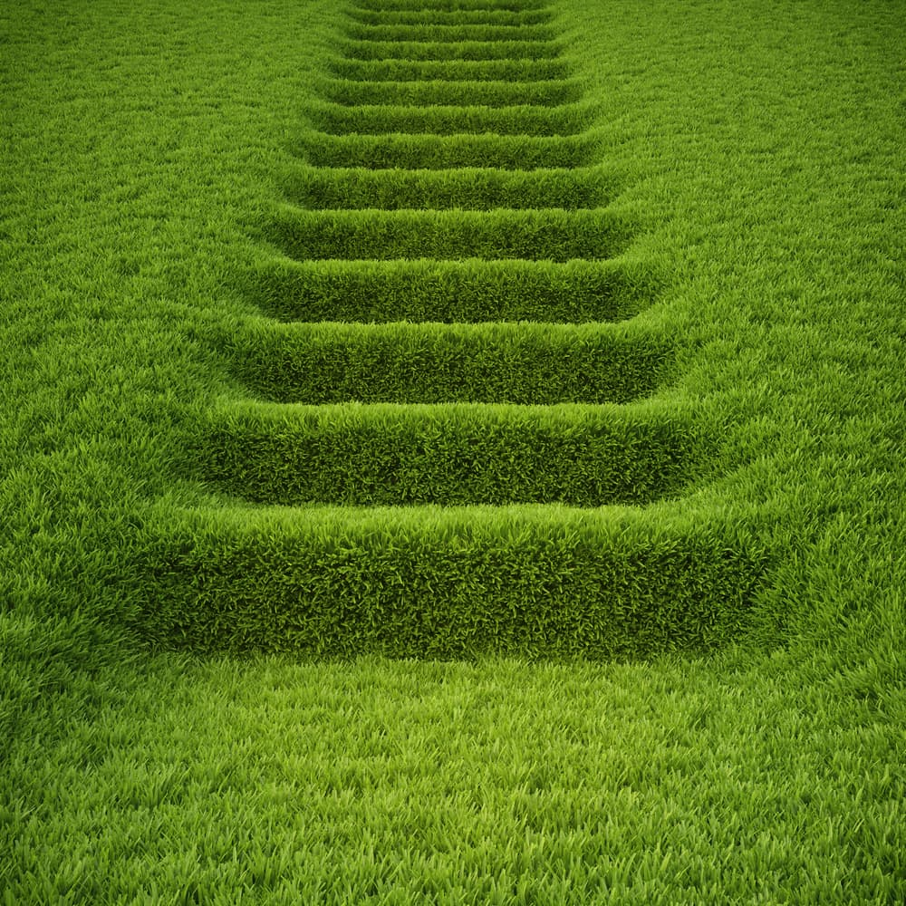grass-covered steps
